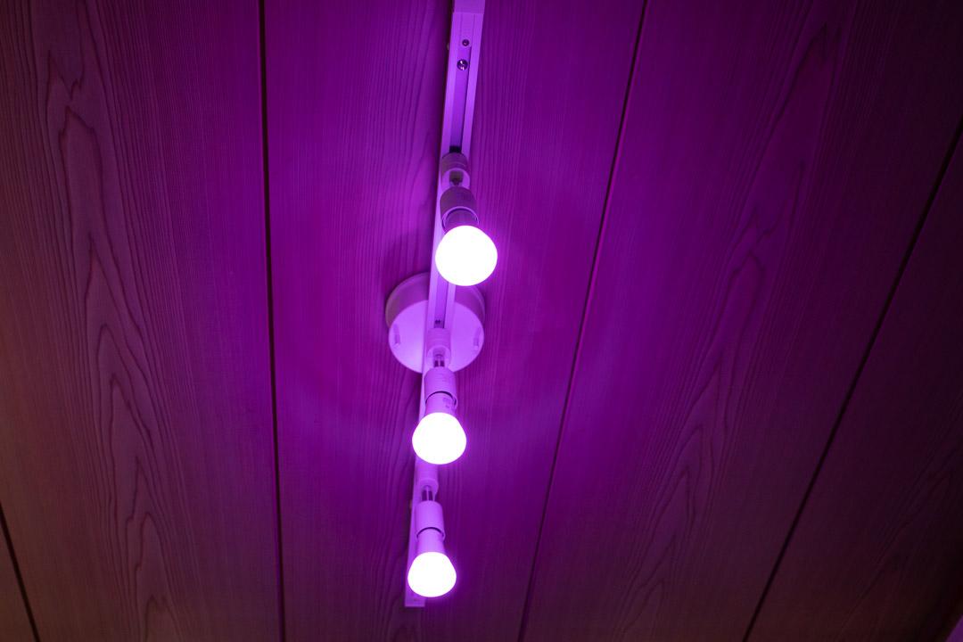 Hue Bluetooth 紫